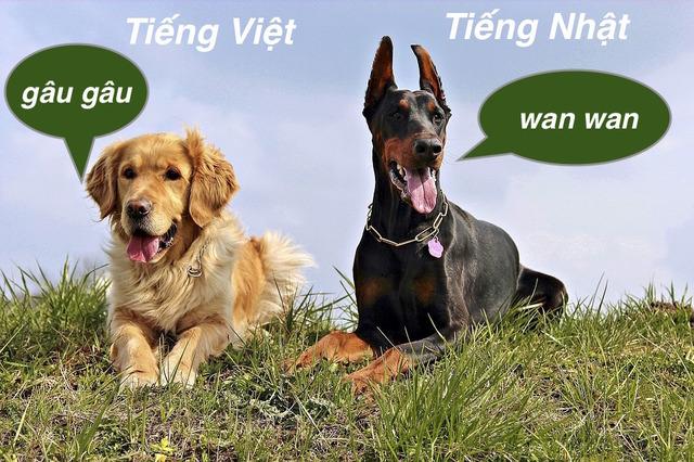 Tiếng kêu của chó trong tiếng Nhật