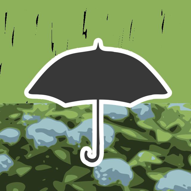rainy-season.png